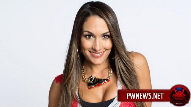 Nikki Bella - Итоги 2014 года - Новости реслинга WWE 2019  Nikki Bella - �...