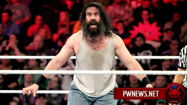 Люк Харпер вернется на Raw?