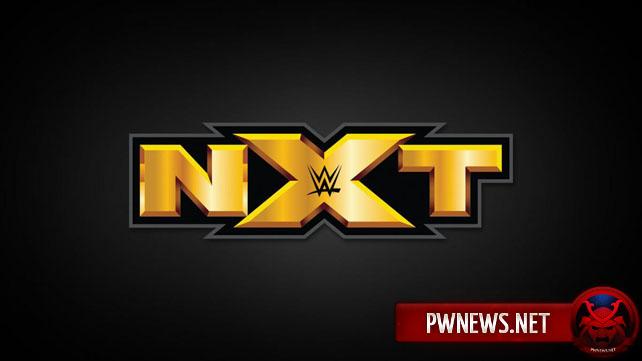 Травмированная топ-звезда NXT замечена в городе, где будет проходить Raw (потенциальный спойлер)